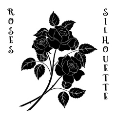 Flowers bouquet roses silhouette vector