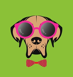 Images of a dog wearing glasses vector