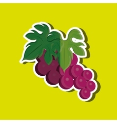 Grapes icon design vector