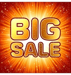 Big sale message vector image vector image
