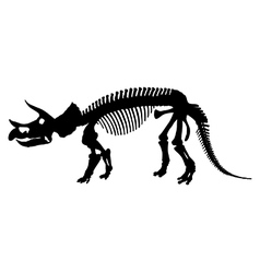 Dinosaur skeleton silhouette vector image vector image