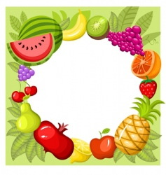 fruit card vector image vector image