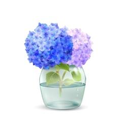 Hydrangea in jar vector