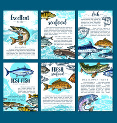 Posters for fresh fish seafood market vector