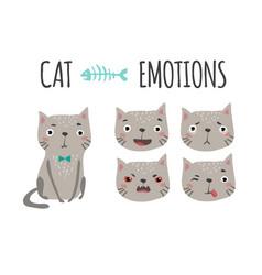 cute cat set of emotions vector image