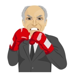 Angry senior businessman with boxing gloves vector