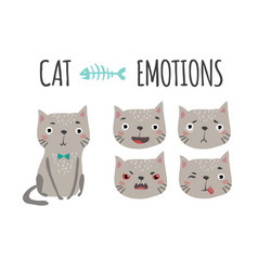cute cat set of emotions vector image