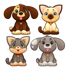Cute dogs and cats vector image