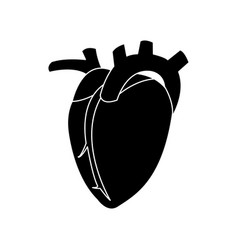Heart human organ healthy silhouette vector