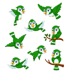 Set of green bird cartoon posing vector