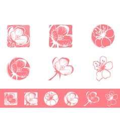 Cherry blossom logo vector