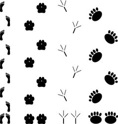 Foot print set vector image vector image