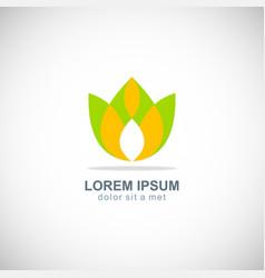 green abstract lotus flower logo vector image
