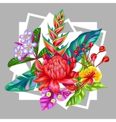 Print with thailand flowers tropical multicolor vector