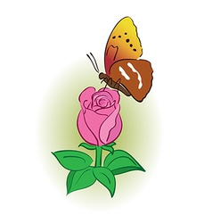 rose with bright butterfly vector image vector image