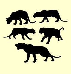 puma panther and tiger animal silhouette vector image