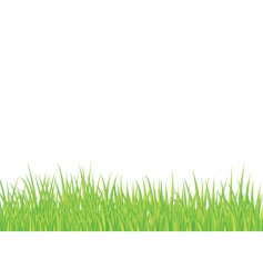 Landscape grass vector