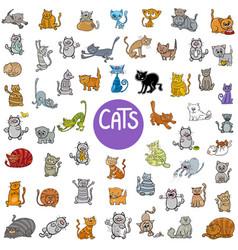 cartoon cat characters big set vector image