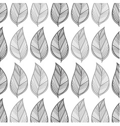 leaves background design decoration vector image