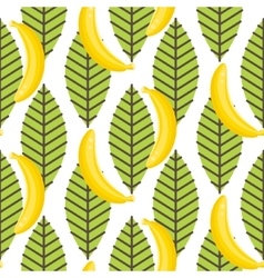 Banana fruit with leaves seamless pattern vector