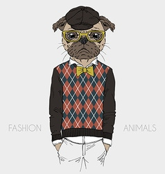 Dressed up pug doggy hipster style vector