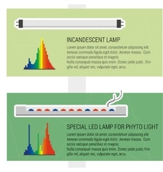 Features led and fluorescent lamps vector