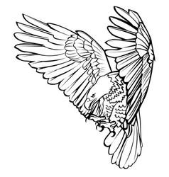 Bald eagle attack swoop landing black line vector