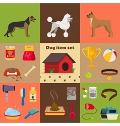 Dog care object set items and stuff vector