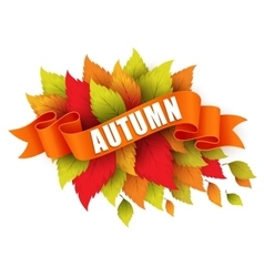 Fall leave with ribbon banner vector image vector image