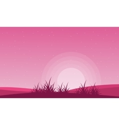 Valentine theme field with pink backgrounds vector image