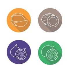 Tropical fruits flat linear long shadow icons set vector image