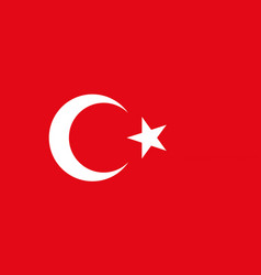 Colored flag of turkey vector