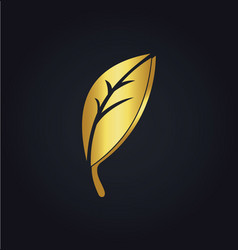 Gold leaf organic logo vector