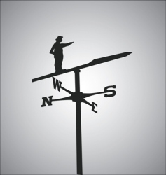 weathercock vector image