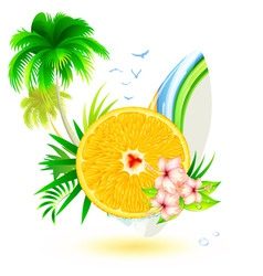 summer fun vector image