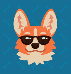 Corgi dog emotional head in sunglasses vector