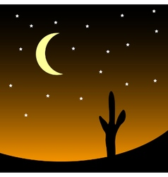 Desert at night vector