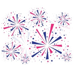 Fireworks on white vector image vector image
