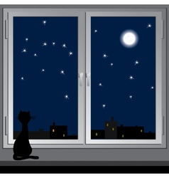 Nightly window and cats vector image vector image