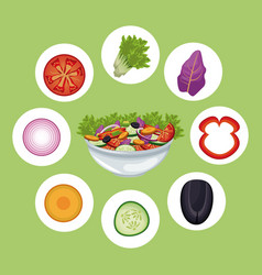 Bowl salad vegetables meal diet vector