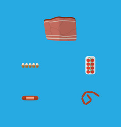 Flat icon food set of kielbasa beef bratwurst vector