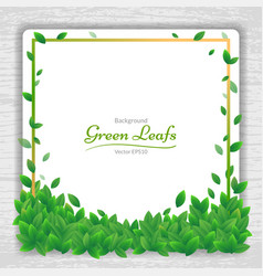 Nature background banner with green leaf frame vector