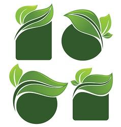 leaves frames vector image