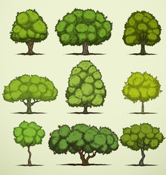 Cartoon deciduous trees vector image