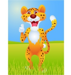 cheetah cartoon with thumb up vector image
