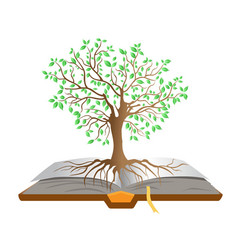 book tree vector image