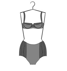 Drak gray and light gray lacy underwear set vector