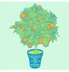 Drawing of a small tangerine tree in a pot vector
