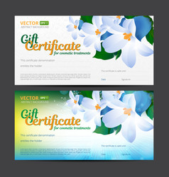 Gift certificate or voucher template for cosmetics vector