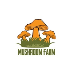 mushroom farm design template vector image